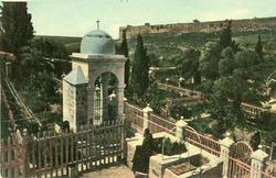 "<bdi class=""metadata-value"">Jerusalem : Garden of Gethsemane</bdi>"