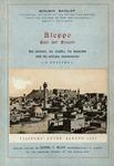 "<bdi class=""metadata-value"">Aleppo past and present : its history, its citadel, and its antique monuments</bdi>"